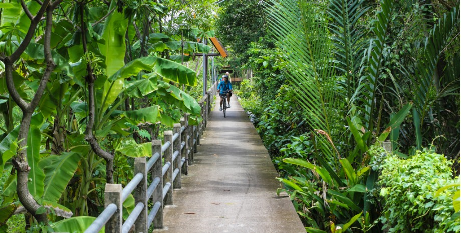 Balade sur l'île de Bangkrachao