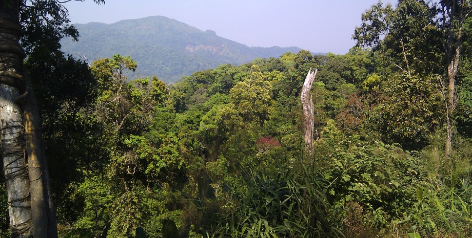 Escapade au Parc National de Kaeng Krachan