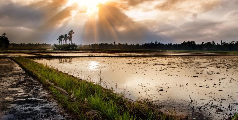 Balade en quad, coucher de soleil sur les rizières