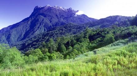Journée au parc naturel Kinabalu