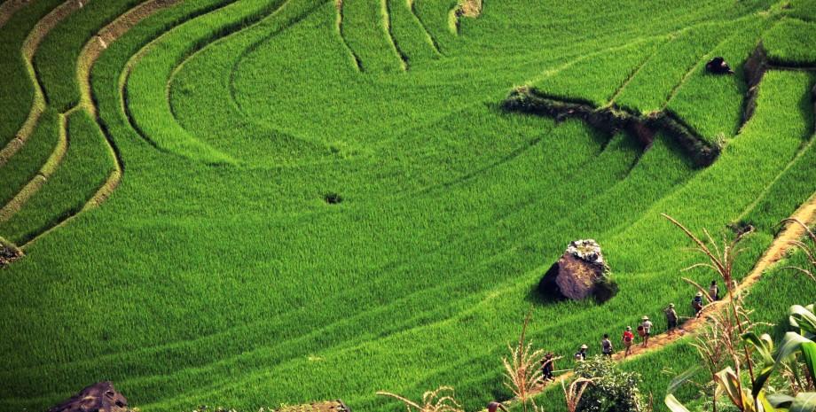 Randonnée à Bali